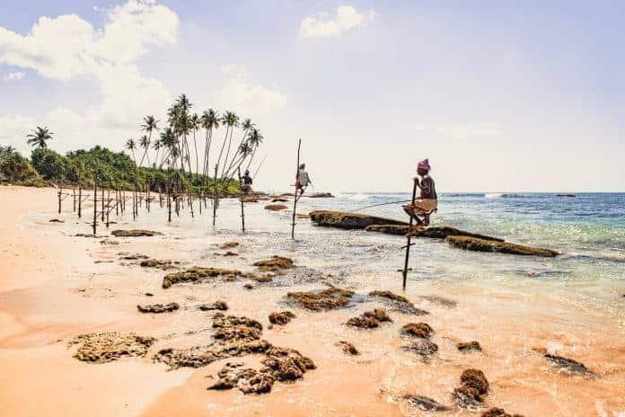 Fishermen on sticks, Sri Lanka