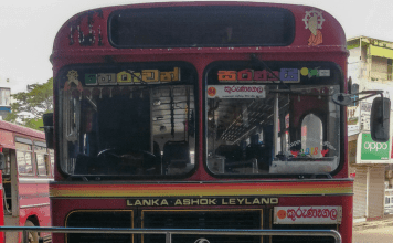 negombo dambulla by bus