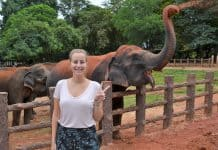 Katrijn with the elephants in Pinawala